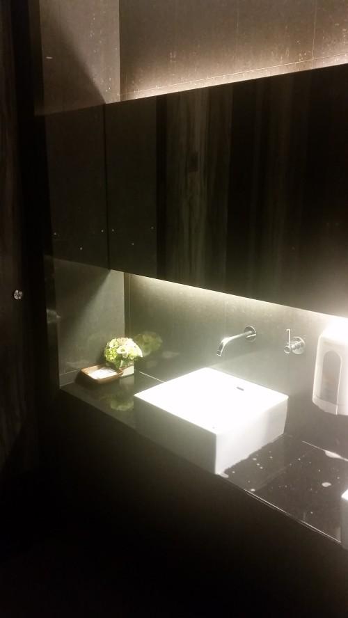 Clean, modern toilets