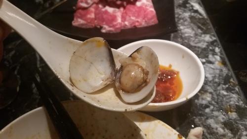 蛤蜊 (lala/clam)